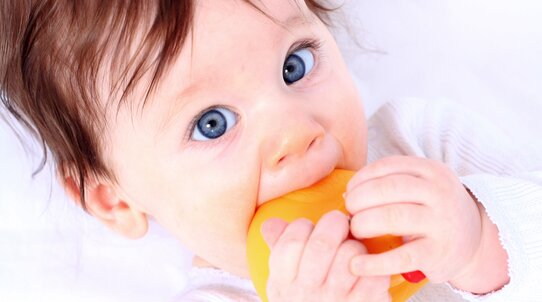 A recently born baby lying on its back in the middle of a large parents bed. A newborn baby with big blue eyes and dark hair is holding an orange teether in both hands and putting it in his mouth.